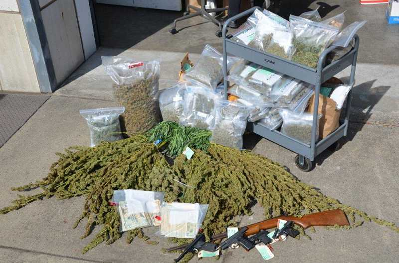 by: SUBMITTED - Five firearms and several pounds of marijuana were found during a raid of a home and Tigard medical marijuana dispensary last week. The raid came just six weeks before voters are to decide on whether to legalize marijuana.