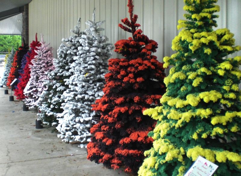 by outlook photo anne endicott colored flocked christmas trees are a new addition - Colored Christmas Tree