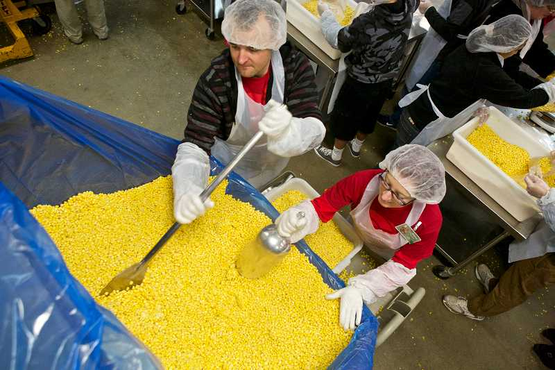 by: TIMES PHOTO: JAIME VALDEZ - Michael Dewitt and his girlfriend, Riane Sherman, break apart frozen corn in a bin in the cooler of Oregon Food Bank. Sherman, an assistant manager at the Bank of America in Tualatin, took part in her company's support of the Day of Service to honor Martin Luther King Jr.