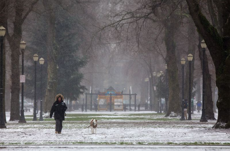 by: TRIBUNE PHOTO: JONATHAN HOUSE - Ania Pavitt and her dog Marie Curie brave Thursday's cold weather for a walk in the North Park blocks.