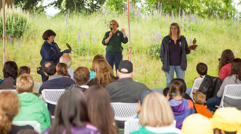 by: TIMES PHOTO: DAVID BLAIR - Cecile Valastro, Deanna Sawtelle and Sherie Salzwedel teach guests about American kestrels during the Tualatin River Bird Festival.