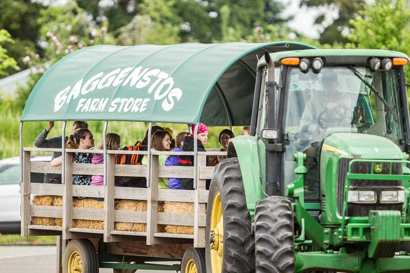 by: TIMES PHOTO: DAVID BLAIR - Visitors are treated to a hay ride during the Tualatin River Bird Festival.