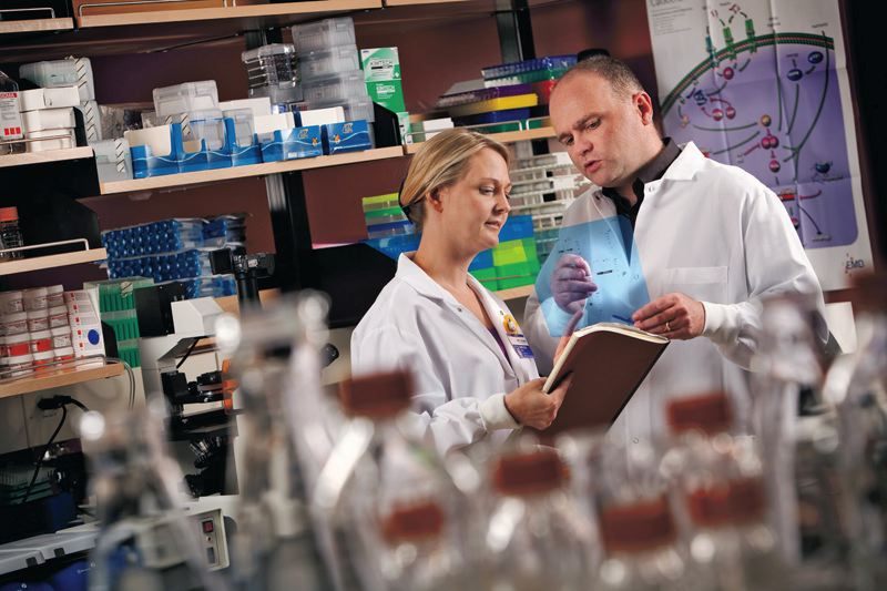 by: CONTRIBUTED BY PROVIDENCE HEALTH AND SERVICES - Michael Gough, Ph.D., talks with Marka R. Crittenden M.D., Ph.D., in the research lab at Providence Cancer Center. Dr. Gough has received a new $1.6 million grant to continue his immunotherapy research in treating pancreatic cancer.