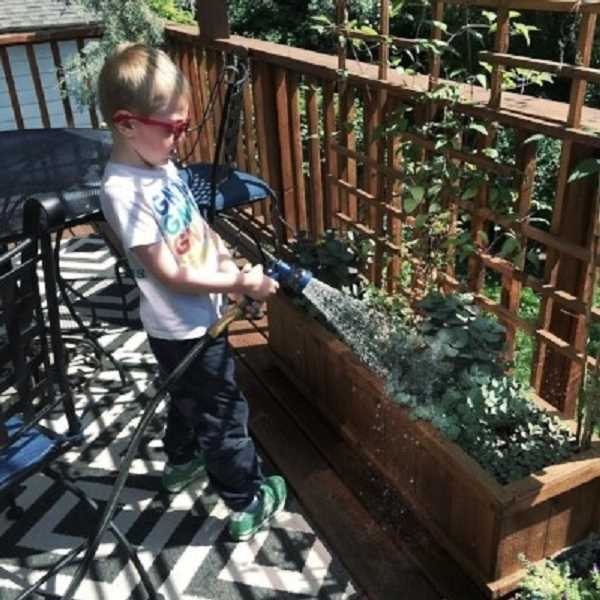 COURTESY PHOTO - Gurton's Plant Shop sprung out of Julina Abbott's ancestry of growers -- a love for gardening and plant cultivation she plans to pass on to her sons. Her kindergartner, Mason, has already shown his green thumb.