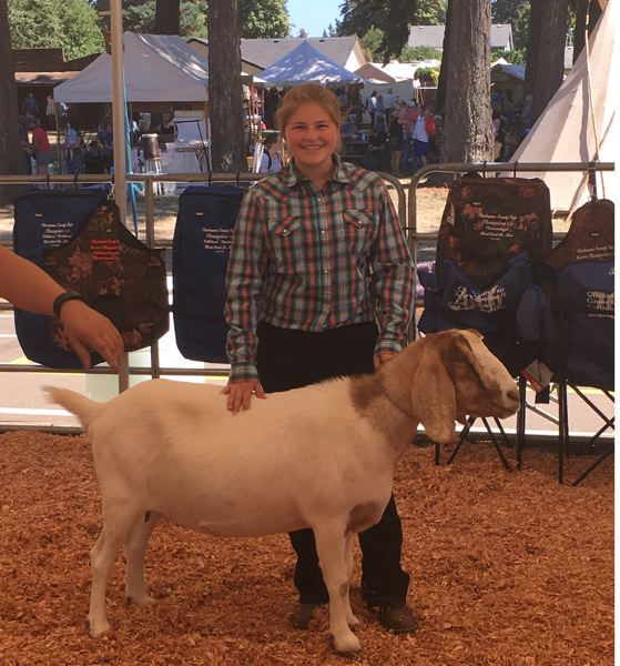 Grace Pegnone shows a goat during a confirmation ceremony at the Clackamas County Fair.