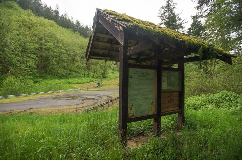 PAMPLIN MEDIA GROUP: JOSH KULLA - This lush rainforest is at the heart of a 156-acre Nature Conservancy property along the Sandy River that soon will be divvied up between the Metro regional government and heirs to the Diack family, which once owned the land.