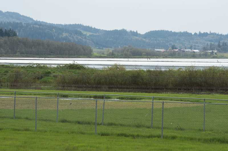 NEWS-TIMES PHOTO: CHRISTOPHER OERTELL - The U.S. Fish and Wildlife Service will reveal its habitat restoration ideas for Wapato Lake at an open house Monday night.