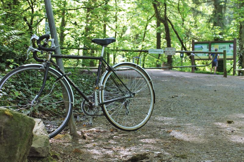 PORTLAND TRIBUNE: LYNDSEY HEWITT - Forest Park is the largest forested natural area in a city's limits in the United States. The city has introduced five concepts to adjust or add trails to the park for cyclists.