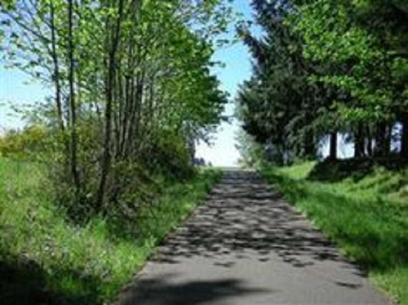 STOCK IMAGE - The Molalla Forest Road runs from Canby to our southern neighbor.