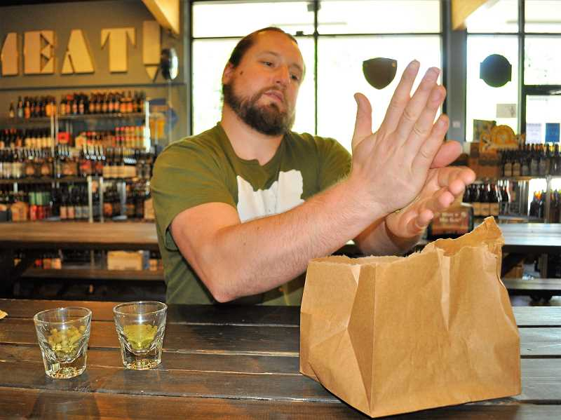 BLAIR STENVICK - Tyler Staples does a 'hop rub' of a Cascade hop at Uptown Market. The oils left on his hand smell like earth and grapefruit.