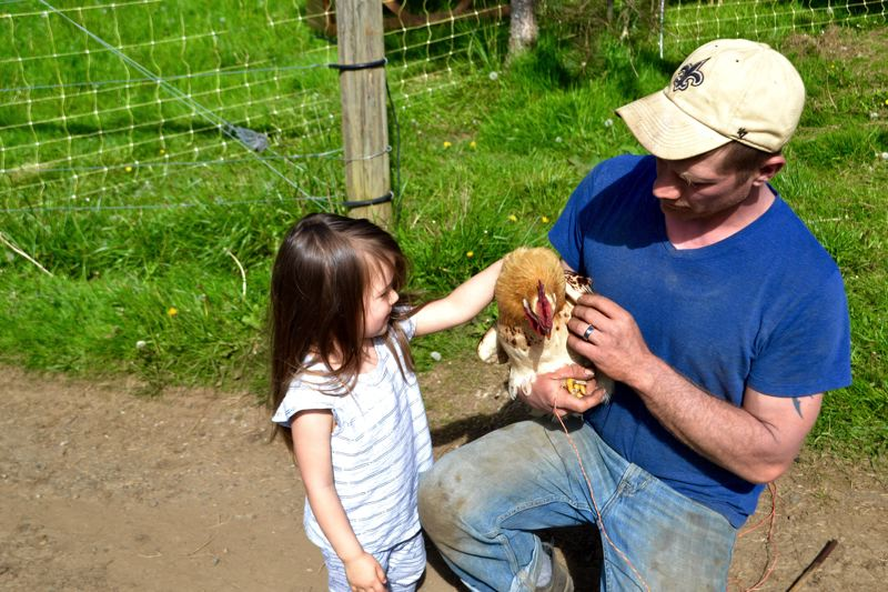 POST PHOTO: BRITTANY ALLEN - The Easleys raise chickens and sell eggs as well as produce at Slice of Heaven Farms.