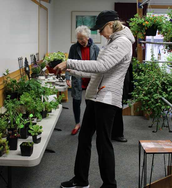SPOKESMAN PHOTO: CLAIRE GREEN - The Wilsonville Garden Club put out an impressive array of plants and hanging baskets for its annual spring plant sale May 13.