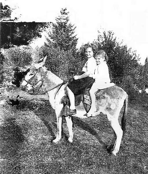 COURTESY OF PENNIE QUINLIN AND JUDIE QUINLIN BUNCH - A favorite attraction at Oaks Amusement Park in the middle of the Twentieth Century was The Missouri Mule Rides. In the winter, Oaks Park management encouraged the public to adopt and care for their animals until the park reopened for the summer. Here you see sisters Judie and Pennie Quinlin riding atop Clara Belle the donkey.