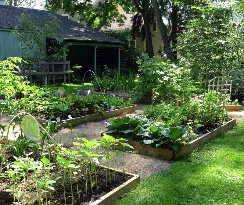 FILE PHOTO - Take the June 24 tour of eight Forest Grove gardens on the Farm Your Yard tour.
