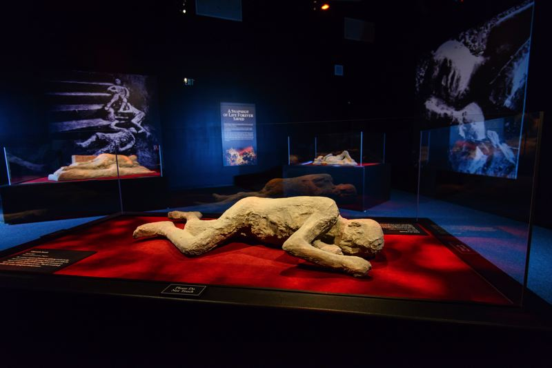 COURTESY: OMSI - In the new exhibit at OMSI, 'Pompeii: The Exhibition,' journey through time and see more than 200 rare artifacts from the forgotten city, including weapons and armor, jewelry and household items, precious artwork and even preserved human bodies.