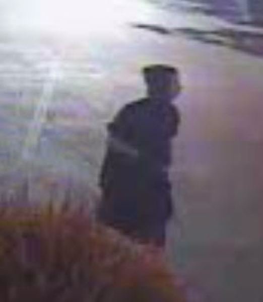 PHOTO COURTESY: CLACKAMAS COUNTY SHERIFF'S OFFICE - This person is sought for four arsons in Clackamas County in late May.
