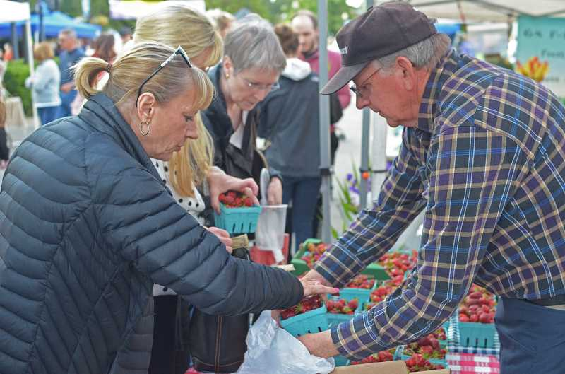 HILLSBORO TRIBUNE PHOTO: JOHN WILLIAM HOWARD - Phil Dudonis, of Dudonis Farms from Sherwood, hands a customer a box of strawberries at his stand on Northeast Third Avenue on Tuesday evening.