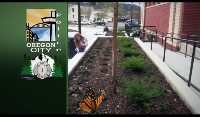 PHOTO COURTESY: WILLAMETTE FALLS MEDIA CENTER - As seen in this screen shot of a video in which a butterfly is digitally added in, a garden will be planted in the concrete planter directly to the west of the Oregon City Public Library's Sixth Street entrance.