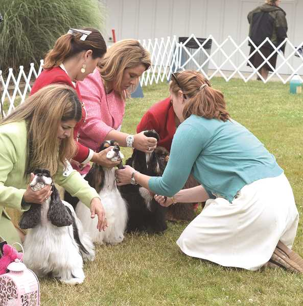 JOHN BAKER - The Clackamas Kenne Club Dog Show will be at the fairgrounds this weekend.