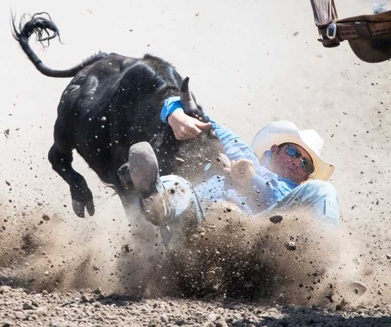 LON AUSTIN/CENTRAL OREGONIAN - Blake Knowles, of Heppner, finishes with a time of 6.7 seconds on his second steer wrestling run. Knowles won the average in the event with a time of 13.5 seconds on two head.