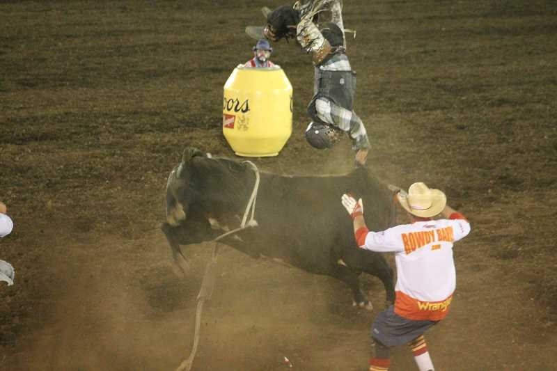 PIONEER PHOTO: CONNER WILLIAMS  - Justin Schmidt was skyrocketed after his run of the bull riding during the opening night of the 2017 Molalla Buckeroo Rodeo. He did a full backflip and ended up landing on his feet, earning him a standing ovation.