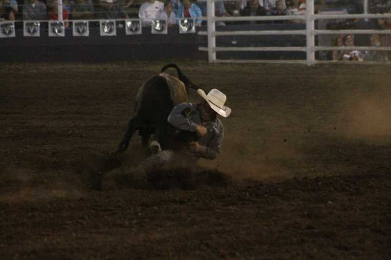 PIONEER PHOTO: CONNER WILLIAMS  - Sterling Lambert sits in first place in the steer wrestling after averaging 8.9 seconds over his two runs.