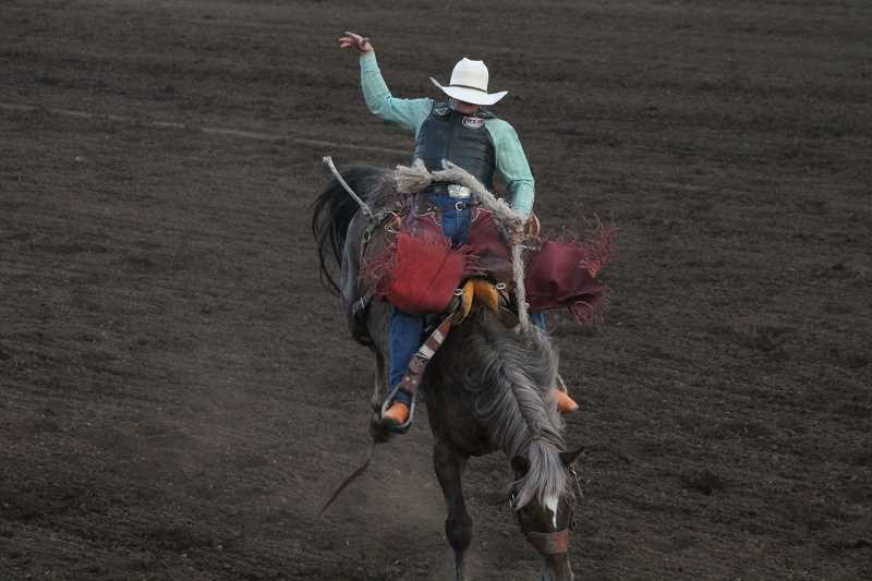 PIONEER PHOTO: CONNER WILLIAMS  - Brady Nicholes shot into first place in the saddle bronc riding with an 84-point ride Monday night.
