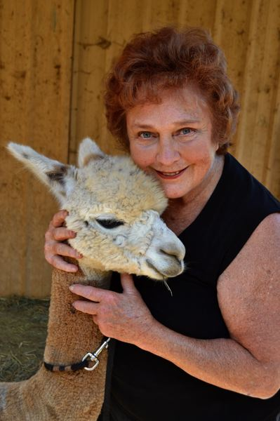 POST PHOTO: BRITTANY ALLEN - Poutala owns several alpacas, and enjoys playing the harp for them in her downtime.