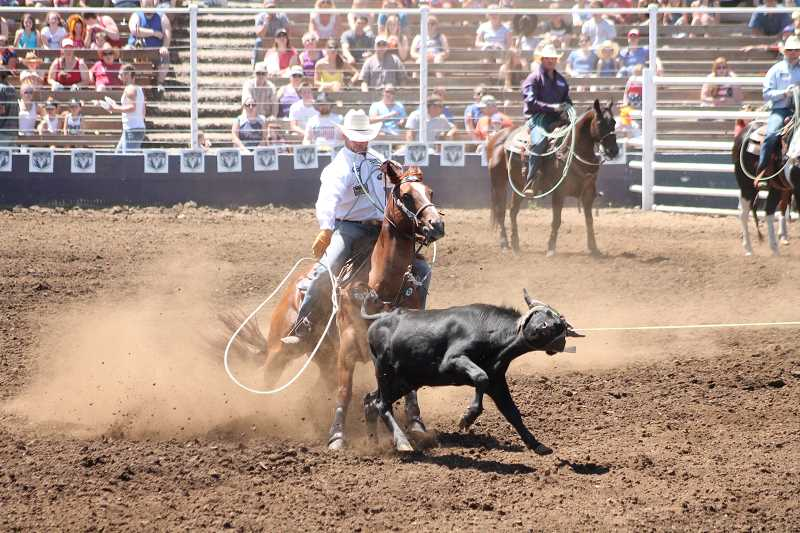 PIONEER PHOTOS: CONNER WILLIAMS - Buddy Hawkins II and Lane Ivy (not pictured) set a new arena record in the team roping during the fourth performance of the Buckeroo at 3.9 seconds.