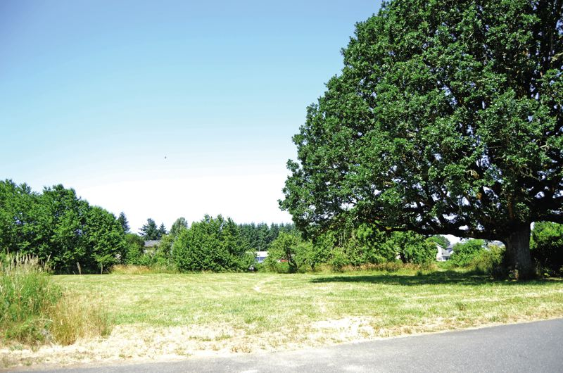 SPOTLIGHT PHOTO: COURTNEY VAUGHN - A new park in Scappoose will be developed thanks to a $450,000 grant the city got. The park will be one of four developed parks in the city.