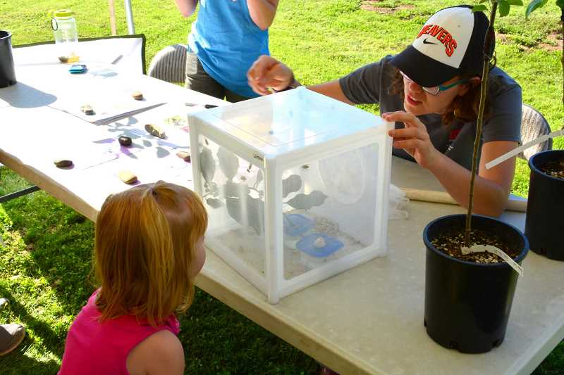 SUBMITTED PHOTO - Many research projects will be on display, including multiple invasive species of insects and the solutions NWREC is experimenting with.