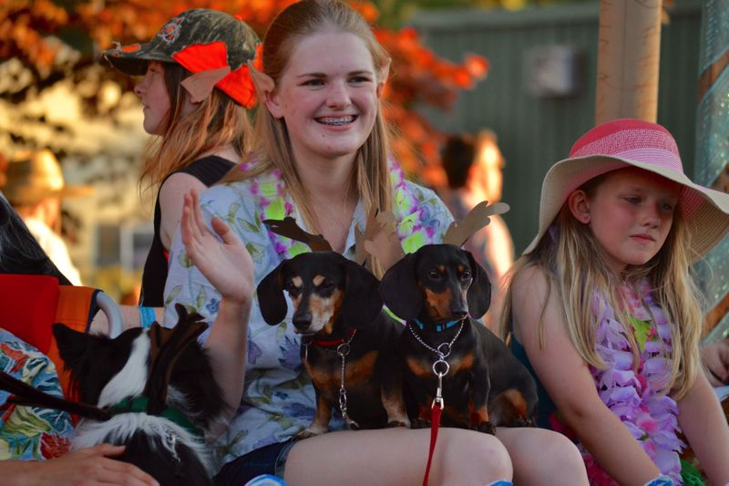 POST PHOTO: BRITTANY ALLEN - The 4-H Muttsketeers club doned their four-legged friends in Christmas attire and took first place for best community float.