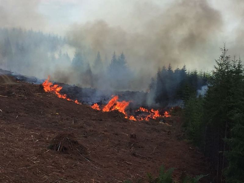 Resources 'stretched' as winds strengthen BC wildfires