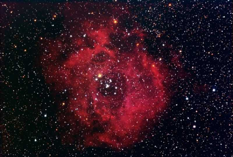 COURTESY OF SCOTT MILLER - Summerfield astronomer Scott Miller photographed the Rosette Nebula, also known as Caldwell 49, using his backyard telescope. The Rosette Nebula is located in the Monoceros region of the  Milky Way Galaxy.