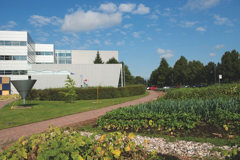 COURTESY CIRQUE DU SOLEIL  - Cirque du Soleil has a garden next to its Montreal corporate headquarters, where it grows food that supplements produce in its cafeteria.