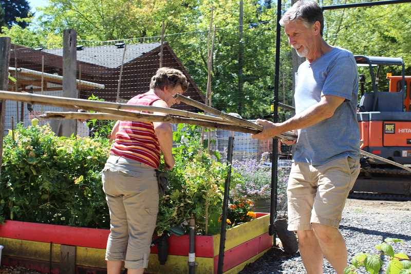 TIDINGS PHOTO: PATRICK MALEE - Peter Herring carries stakes to one of the garden beds.