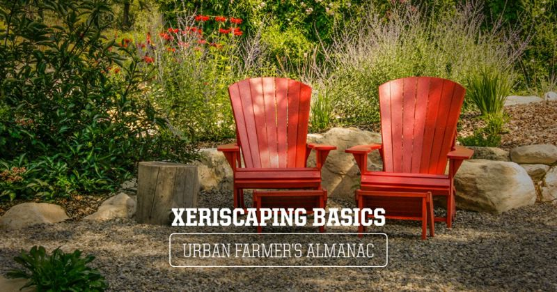 Coastal has what you need to xeriscape your property.