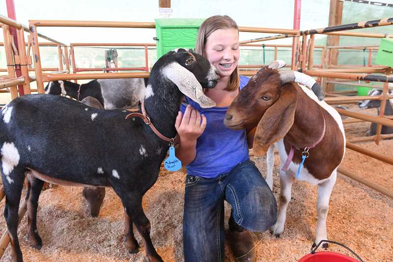 CENTRAL OREGONIAN FILE PHOTO - The Crook County Fair will once again feature a variety of livestock exhibits as well as some entertaining activities for the whole family to enjoy.