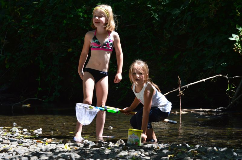 SPOTLIGHT PHOTO: NICOLE THILL - Eight-year-old Aleah Bennett, left, and five-year-old Amelia Stencil try to catch crawdads in McNulty Creek on Tuesday, Aug. 1. Stencil's dad, Douglas ( not pictured) said he and his daughter came out to the park to cool off and spend free time together as temperatures in the region began to heat up.