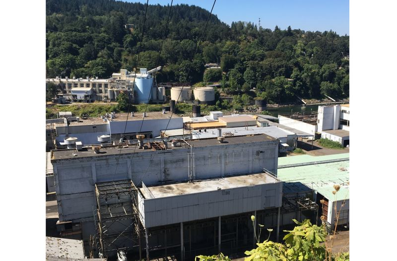 The light-brown patches on the roofs are deliveries of new wood to be burnt in two former paper-mill buildings.