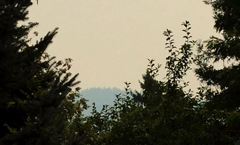 PAMPLIN MEDIA GROUP FILE PHOTO - Wildfire smoke drifted into the Willamette Valley two years ago, during a similar heat wave. The region's air quality advisory has been extended through noon Friday.