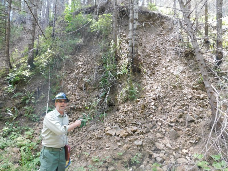 ESTACADA NEWS PHOTO: EMILY LINDSTRAND - Todd Reinwald, Forest Watershed & Soils Program Manager for the Mount Hood National Forest, points to an area near Memaloose Road that has been cleared from landslides 12 times since the 36 Pit Fire.
