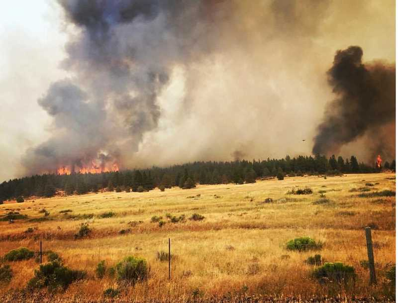 PHOTO COURTESY OF INCIWEB - The Nena Springs Fire on the Warm Springs Reservation had burned about 34,000 acres, as well as one home and other buildings by Friday afternoon, Aug. 11. About 240 personnel were on the fire, but more were being called in. The American Red Cross has set up a shelter for those affected by the fire at the Warm Springs Community Center.