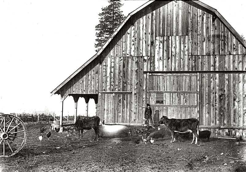 COURTESY OF JOHN FYRE - Could this be the hay barn of the Willsburg/Wilsons Dairy, prior to its destruction by fire in 1914?