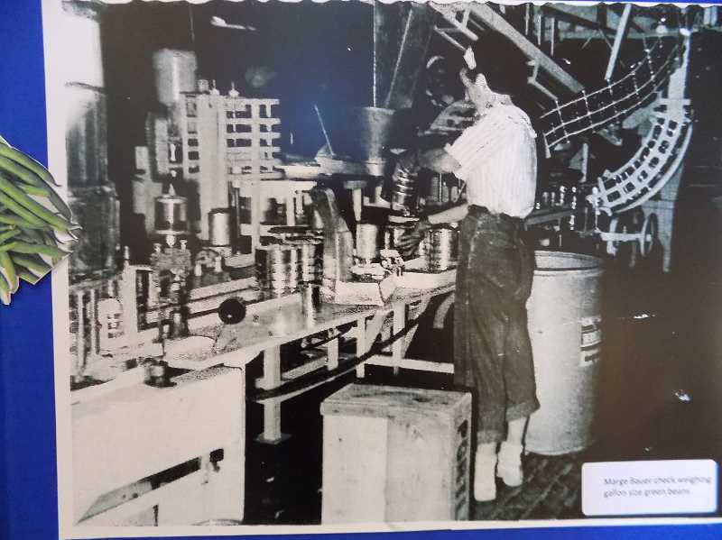 COURTESY OF YVONNE SCHELLER - A worker weighs a one-gallon can of green beans coming across an assembly line at the now-defunct Portland Canning Company.