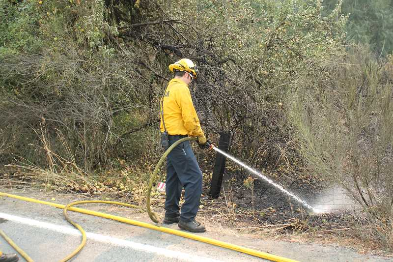 PIONEER PHOTO: CONNER WILLIAMS  - A firefighter from the Molalla Fire District extinguishes some of the lingering smolders from a small brush fire that burned about one-half of an acre of scotch brush and blackberry bushes just off Dickey Prairie Road near Glen Avon Tuesday.