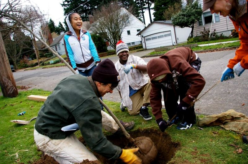 COURTESY: FRIENDS OF TREES - Friends of Trees works with diverse communities of neighbors on tree-planting projects, and is working on how to communicate better with immigrant groups that speak multiple foreign languages.