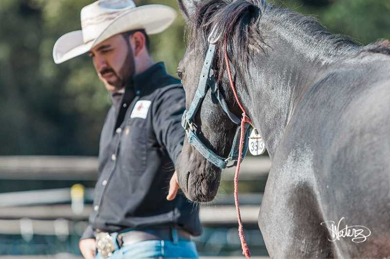 SUBMITTED PHOTO: WILD HORSE MOUNTAIN RANCH - Jonath Robles getting a first touch with a mustang mare. Robles is a U.S. Champion Colt Starter who gives demonstrations on how to gentle a wild mustang.