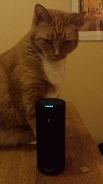 PAMPLIN MEDIA GROUP: JOSEPH GALLIVAN - 'Alexa, what's the current price of salmon at Whole Foods?' said Caramel the cat, never. The Amazon Tap uses Alexa voice controls but it is hard to set up, inconsistent, and who knows what it does with your saved utterances?