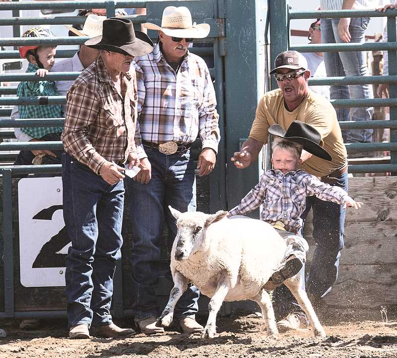 LON AUSTIN/CENTRAL OREGONIAN - Cody Knowles falls off the back of his sheep as it comes out of the chutes, while his father attempts to catch him. Emery Spino, of Warm Springs, won the event.